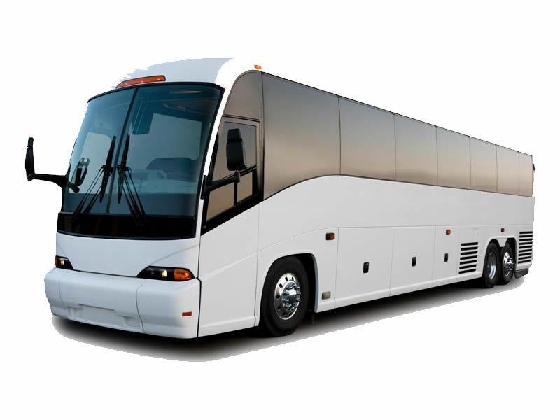 Jacksonville Coach Bus Coach Bus
